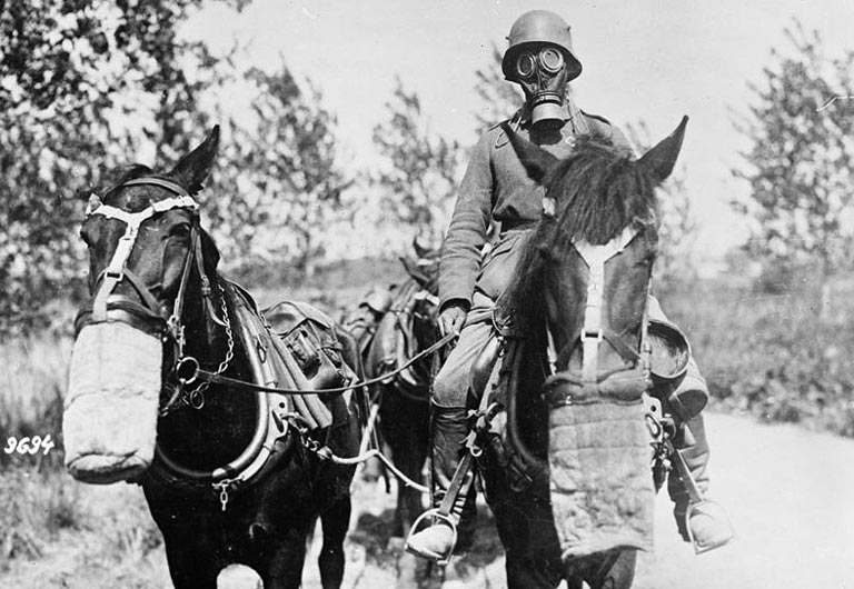 German transport driver and horses wearing gas masks on the Western Front, 1917