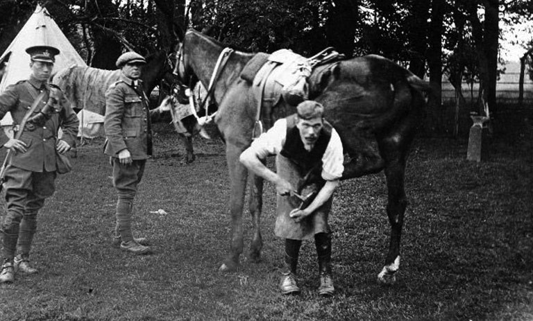 tom_shoeing_horse-ww1